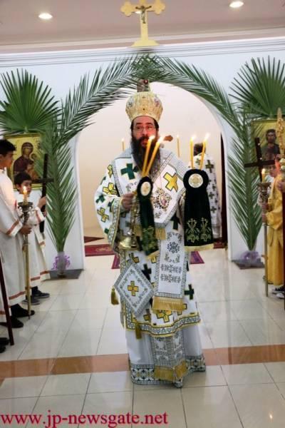 His Eminence on Palm Sunday
